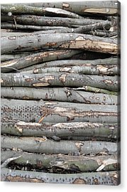 Stack Acrylic Print by Michael Standen Smith