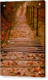 Stairs Acrylic Print by Vail Joy