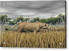 Acrylic Print featuring the digital art Stalking Prey by Walter Colvin
