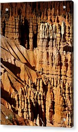 Acrylic Print featuring the photograph Stand Tall by Vicki Pelham