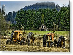 Standing By Acrylic Print by Dale Stillman