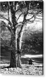 Standing Guard I Acrylic Print