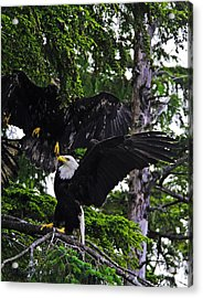 Standing Strong. Acrylic Print