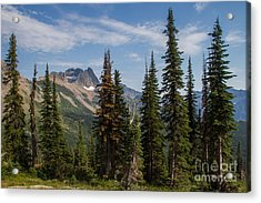 Acrylic Print featuring the photograph Standing Tall And Proud Are Mount Gould And Subalpine Fir 2 by Katie LaSalle-Lowery