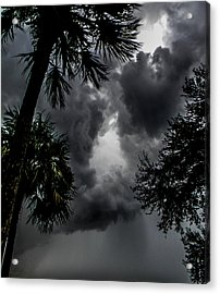 Standing Through The Storm Acrylic Print by Christy Usilton
