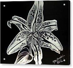 Star Gazer Lily Acrylic Print by Lisa Brandel