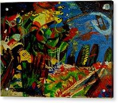 Starry Night Acrylic Print by Carlos Roberto