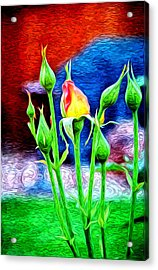 Starting A New Life Acrylic Print by James Steele
