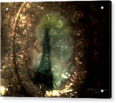 Statue Of Liberty Micro Photo 6 Acrylic Print by Phillip H George