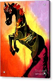 Steed 3 Acrylic Print by Amber Stubbs