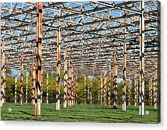 Steel Forest Acrylic Print