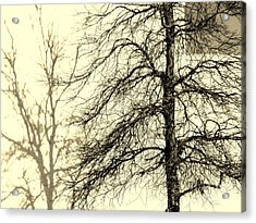Steiglich Steichen And Pratt Acrylic Print by Joe Jake Pratt