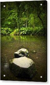Stepping Stones Acrylic Print by Svetlana Sewell