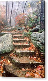 Steps Cloudland Canyon Acrylic Print