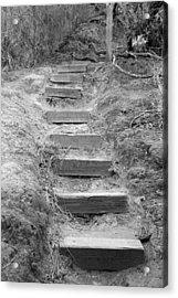 Steps  Acrylic Print by Elizabeth  Doran