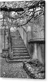 Steps Acrylic Print by Jan Carr
