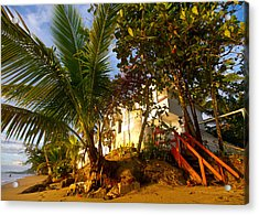 Steps To The Beach Acrylic Print by Tim Fitzwater