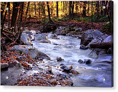 Acrylic Print featuring the photograph Stickney Brook by Tom Singleton