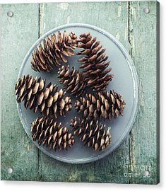 Stil Life With  Seven Pine Cones Acrylic Print by Priska Wettstein