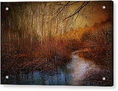 Still By The Stream Acrylic Print by Robin-Lee Vieira