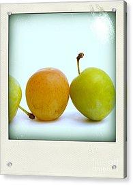 Still Life With Plums. Acrylic Print by Bernard Jaubert