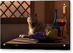 Still Life With Wine Fruit And Cat  Acrylic Print by Daniel Eskridge
