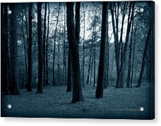Still Of The Night Acrylic Print