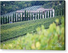 Stone Farmhouse And Vineyard Acrylic Print by Jeremy Woodhouse