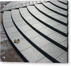 Stone Steps_pyeongchon Park_anyang_south Korea Acrylic Print by Jon William Lopez