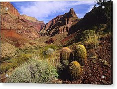 Stonecreek Canyon In The Grand Canyon Acrylic Print by David Edwards