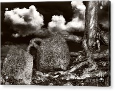 Stones And Roots Acrylic Print by Ari Salmela