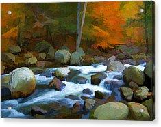 Stony Brook Stream Acrylic Print