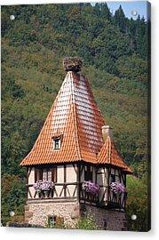 Stork Nest In Alsace France Acrylic Print by Christopher Mullard