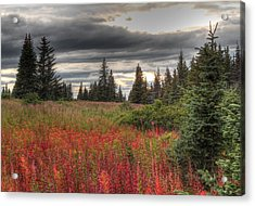 Storm Clouds In Fall Acrylic Print by Michele Cornelius