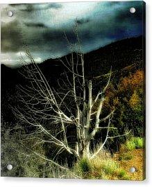 Storm Over The Jemez Mountains Acrylic Print by Ellen Heaverlo