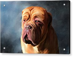 Stormy Dogue Acrylic Print by Michelle Wrighton