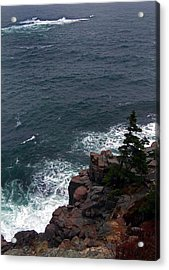 Straight Down Acrylic Print by Skip Willits