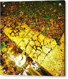 'straw In The Fall' Double #contrast Acrylic Print