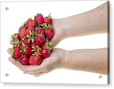 Strawberries In Hands Acrylic Print