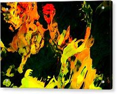 Streaker Acrylic Print by Chua  ChinLeng