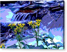 Stream And Flowers Acrylic Print