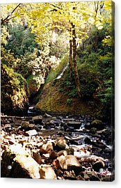 Acrylic Print featuring the photograph Stream Bed Oregon by Maureen E Ritter