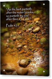 Stream Bed Psalm 42 Acrylic Print by Cindy Wright