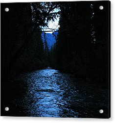 Stream In The Deep Dark Forest Acrylic Print by Donna Barker