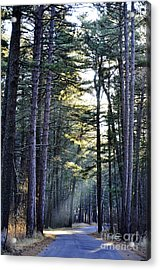 Streaming Dawn Acrylic Print by Whispering Feather Gallery