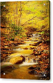 Streams Of Gold Acrylic Print by Darren Fisher