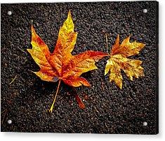 Street Leaf Acrylic Print