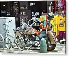 Streetwise Acrylic Print