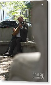 Strings In The Park Acrylic Print by James Knights