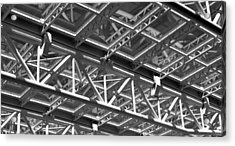 Structural Network Acrylic Print